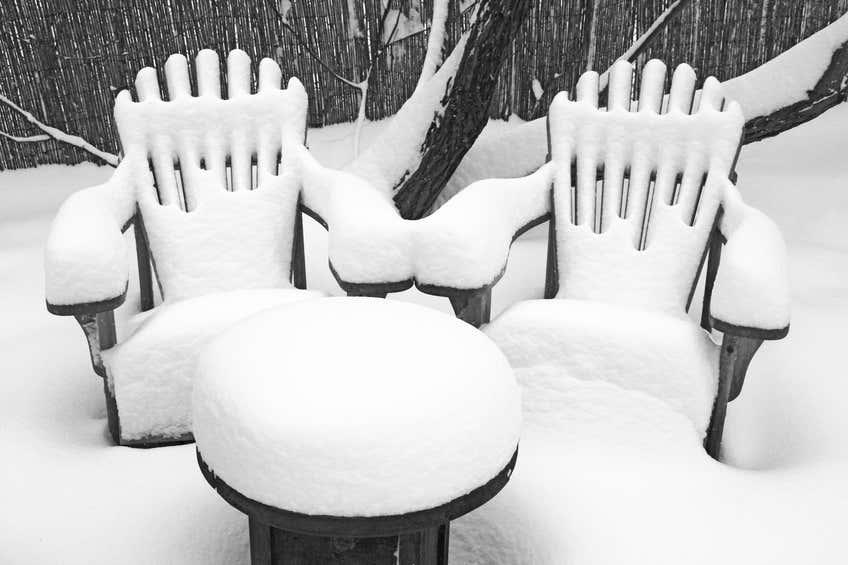 garten winterfest machen in 10 schritten die gro e checkliste. Black Bedroom Furniture Sets. Home Design Ideas