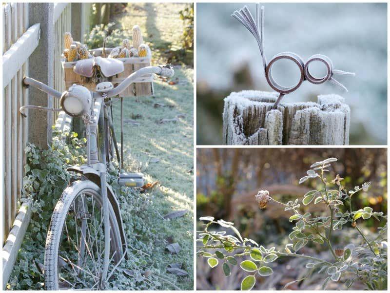 Gartendeko mit Frost
