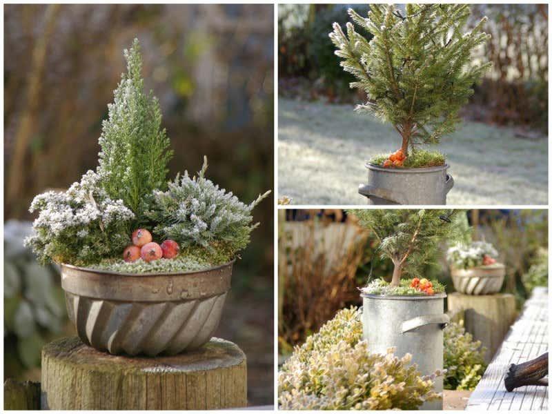 Weihnachten In Haus Und Garten Ideen Und Dekorationstipps