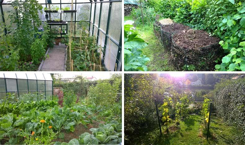 Achims Selbstversorgergarten - Gartenblogs