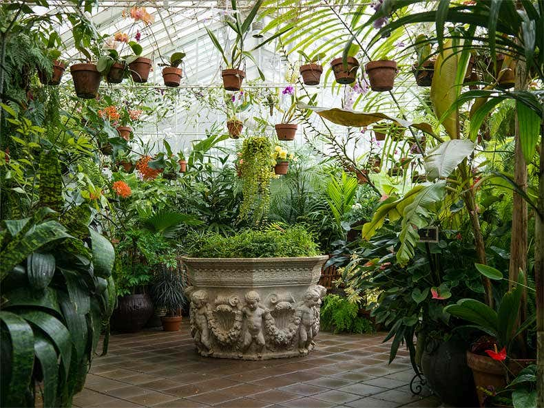 Hängetopfgarten - Gartenblogs
