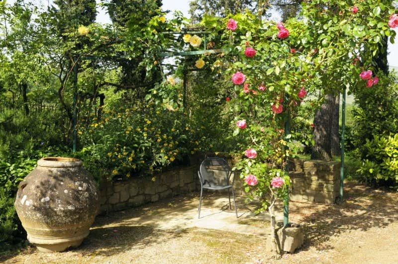 Mediterranen Garten anlegen: Tipps für die Gestaltung