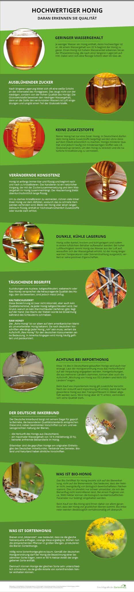 Infografik zum Erkennen von hochwertigem Honig