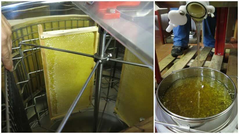 Honig wird geschleudert und anschließend gesiebt