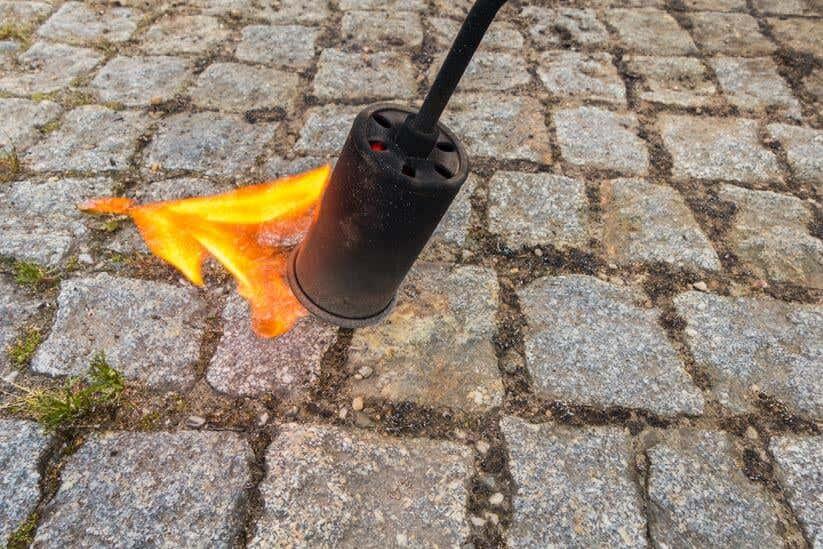 Feuer reinigt Kopfsteinpflaster vor Unkraut