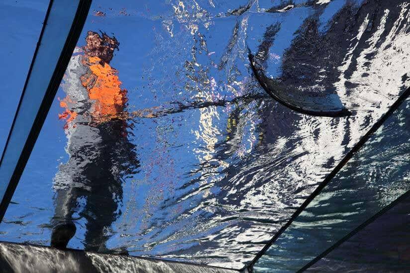 Glasdach reinigen anleitung tricks zur glasdachreinigung