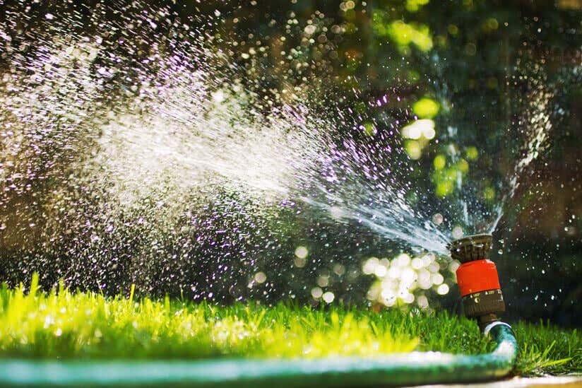 Rasen Bewässern 10 Tricks Zur Richtigen Bewässerung