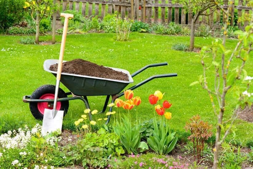 Was Darf Man Als Mieter Im Garten Machen Und Was Nicht
