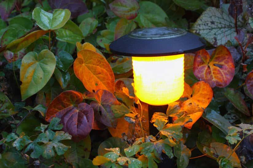 Solarlampe im Garten