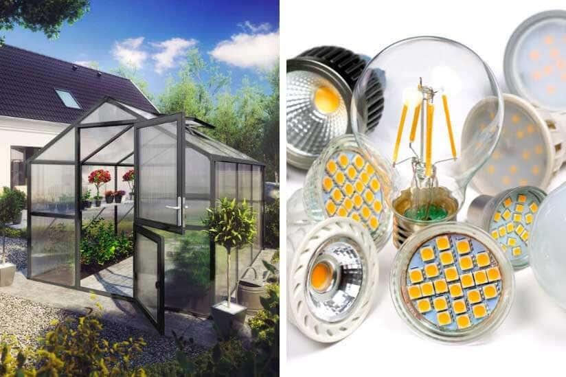 Gewächshaus und LED Lampen
